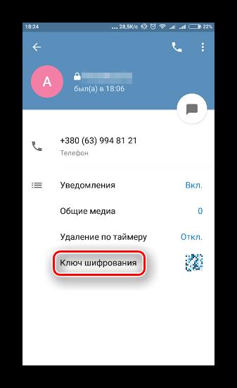 Окно настроек диалога с пунктом настройки секретного ключа в Телеграме