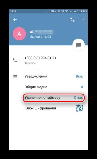 Параметр удаления сообщений секретного чата по времени в Телеграме