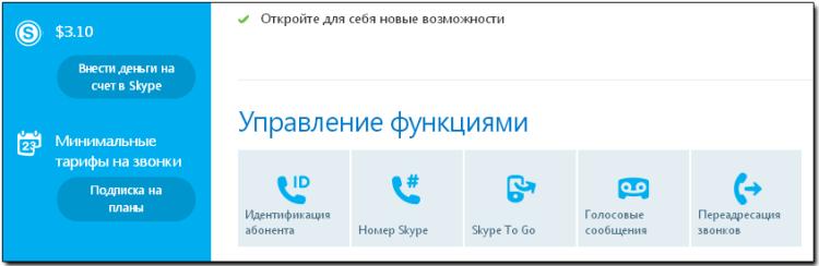 Деньги в Скайп
