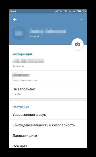 Окно переведенного интерфейса Телеграма на русский язык в настройках
