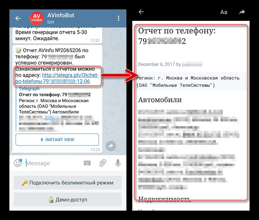 Полный отчет автобота Телеграмм по номеру машины