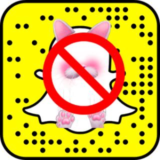 Почему-в-Snapchat-нет-мордочек